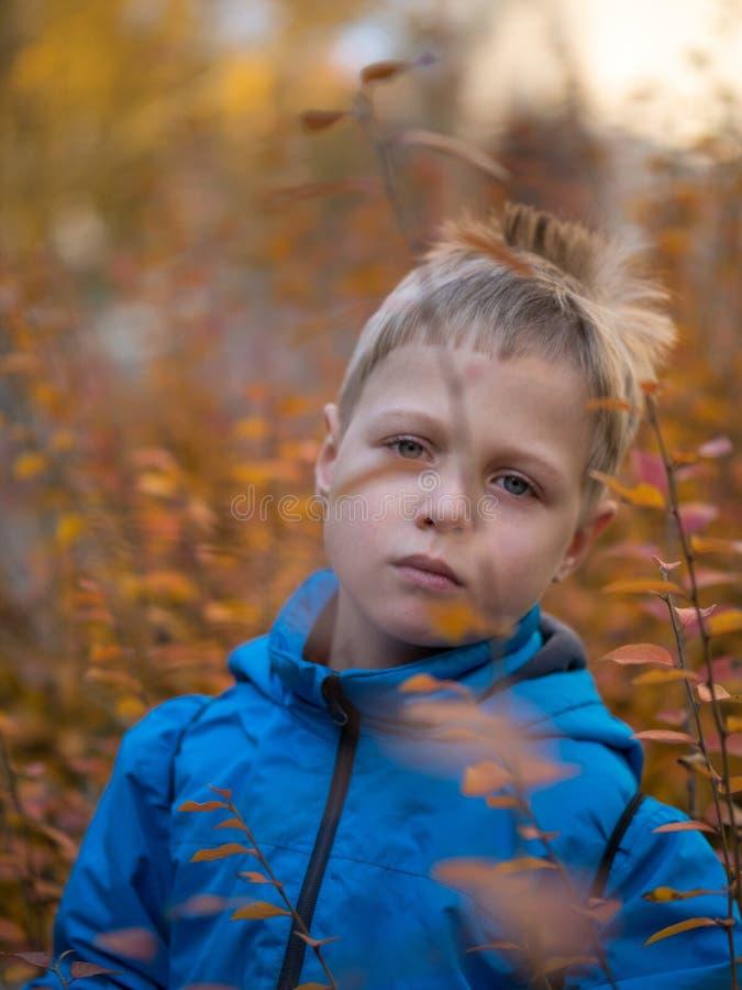 Унылый мальчик в парке осени стоковое изображение rf