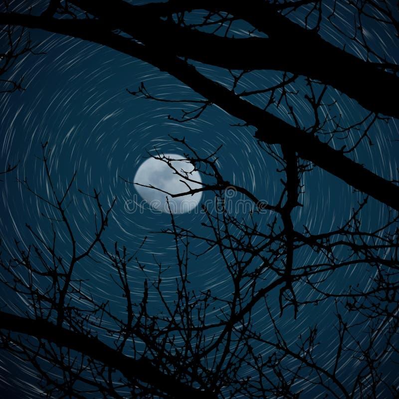 3/4 лун с следом звезды стоковые изображения