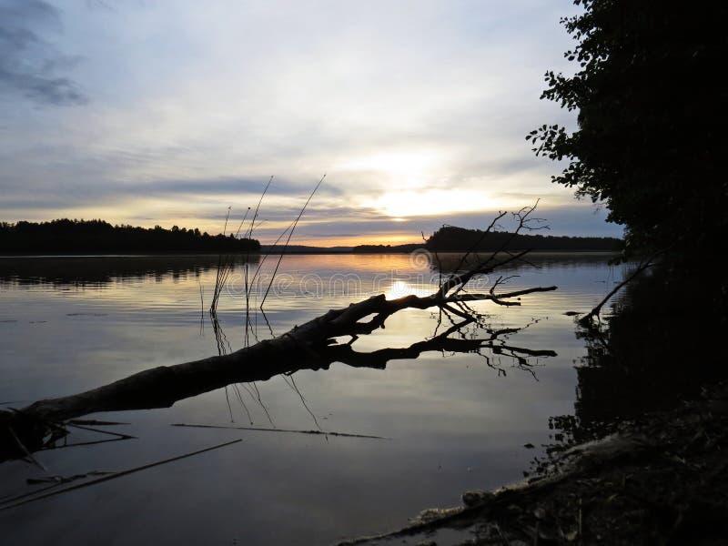 Упаденное отражение дерева в воде во время захода солнца над красивым озером с облачным небом в предпосылке стоковое изображение