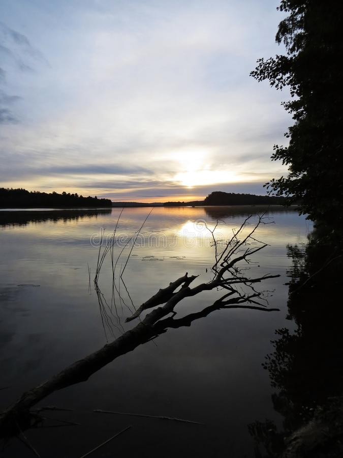 Упаденное отражение дерева в воде во время захода солнца над красивым озером с облачным небом в предпосылке стоковое фото rf