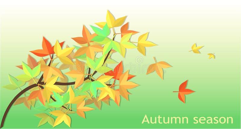 упаденный вектор Mable листьев иллюстрация вектора