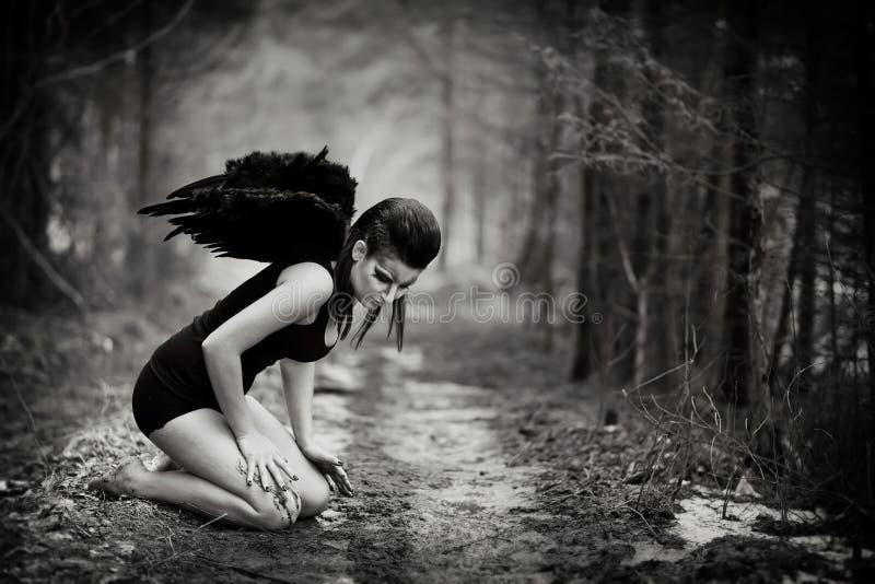 Упаденный ангел стоковые изображения rf