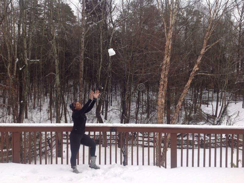 управлять зимой розвальней потехи стоковые изображения rf