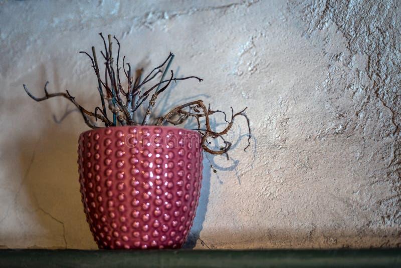 Упущенное мертвое комнатное растение перед деревенской предпосылкой с copyspace стоковое изображение rf