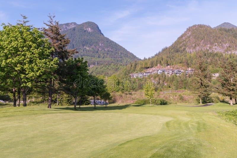 Уравновешенное поле для гольфа, высокие деревья, частные дома и коттеджи на горных склонах, в древесинах стоковые фотографии rf