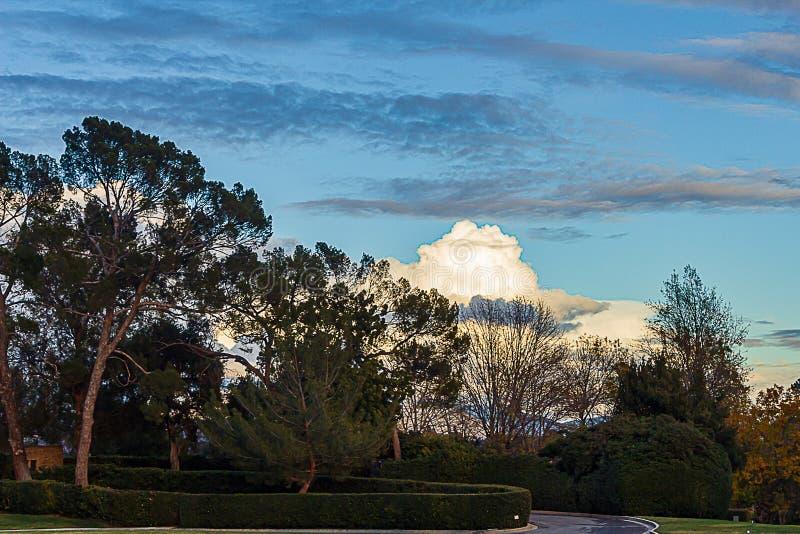 Уравновешенный путь сада вдоль дороги с деревьями и ширью кустов большой неба стоковое фото
