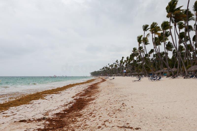 Ураган на пляже в дне стоковое фото rf