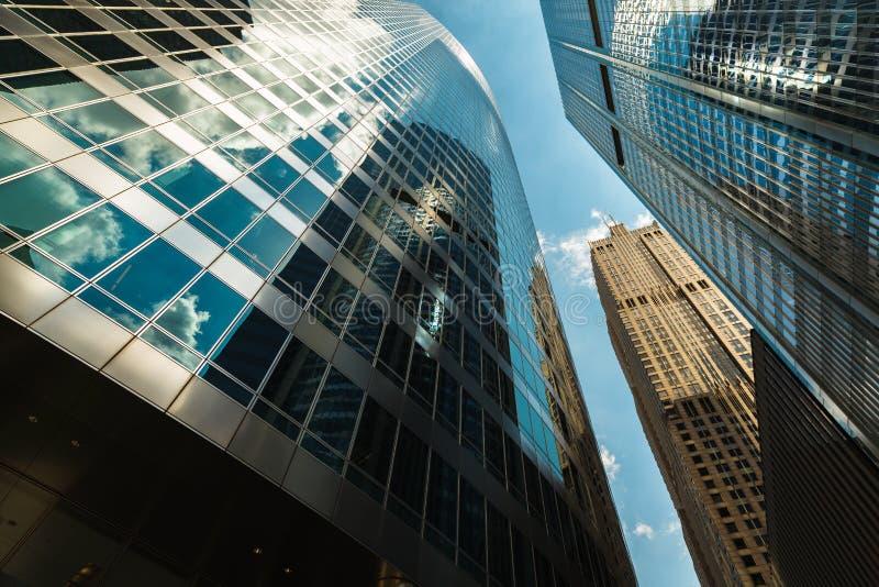 Урбанские небоскребы стоковое изображение rf