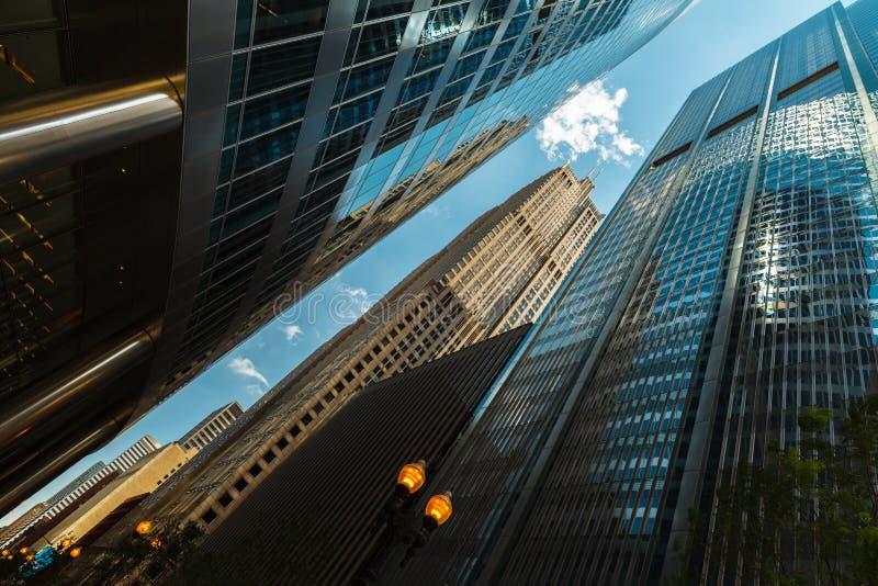 Урбанские небоскребы стоковое изображение