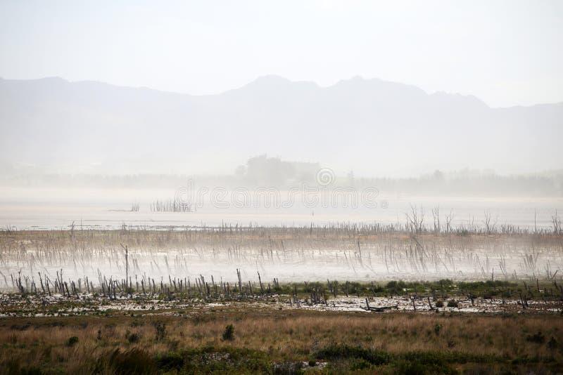 Уровни отлива в запруде Theewaterskloof, западной накидке стоковые изображения