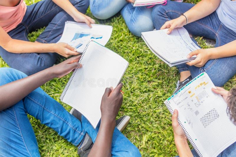 Усаженная группа в составе подростки делая задачи школы на траве Scho стоковое изображение rf