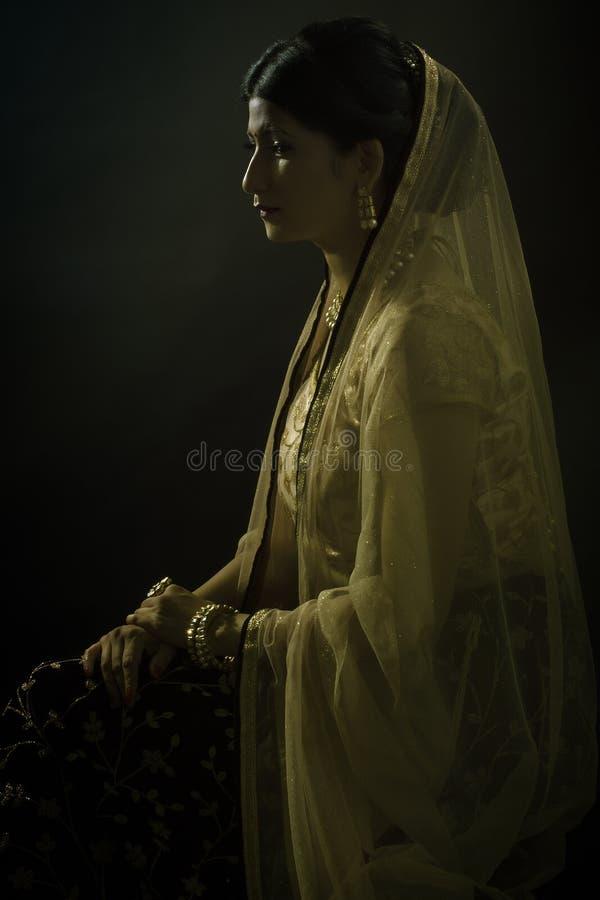 Усаженный портрет молодой индийской дамы стоковое фото rf