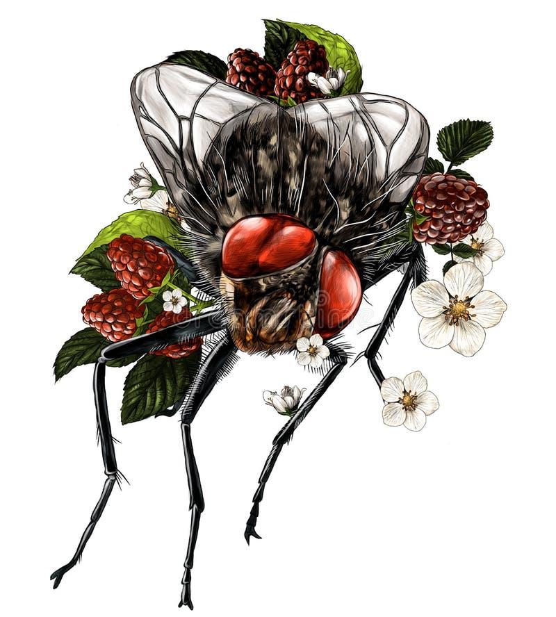 Усаживание мухы окруженное кустами и цветками поленики и вокруг много зрелых ягод иллюстрация вектора