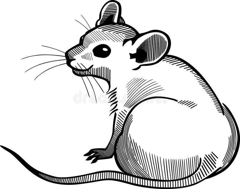 Усаживание мыши иллюстрация штока