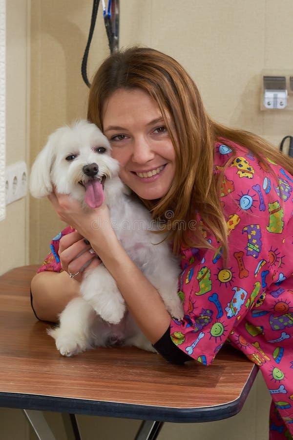 Усмехаясь женщина, белая мальтийсная собака стоковое изображение rf