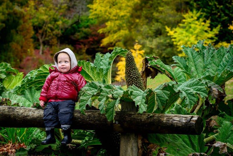 Усмехаясь ребенк в парке стоковое фото