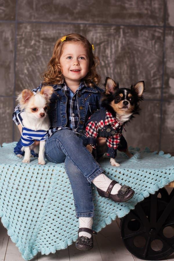 Усмехаясь ребёнок сидит с собаками chuhuahua стоковая фотография