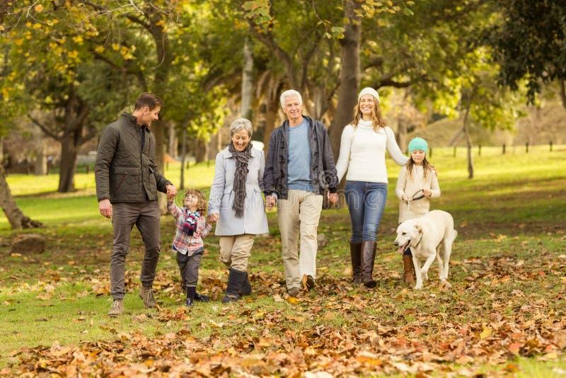 Усмехаясь семья из нескольких поколений идя совместно стоковые фото