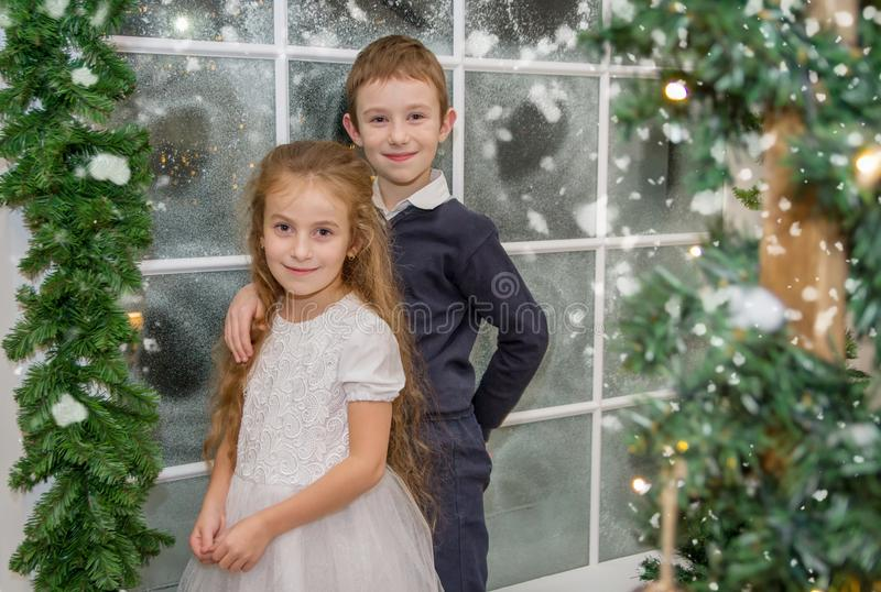 Усмехаясь сестра и брат в студии зимы стоковые изображения rf