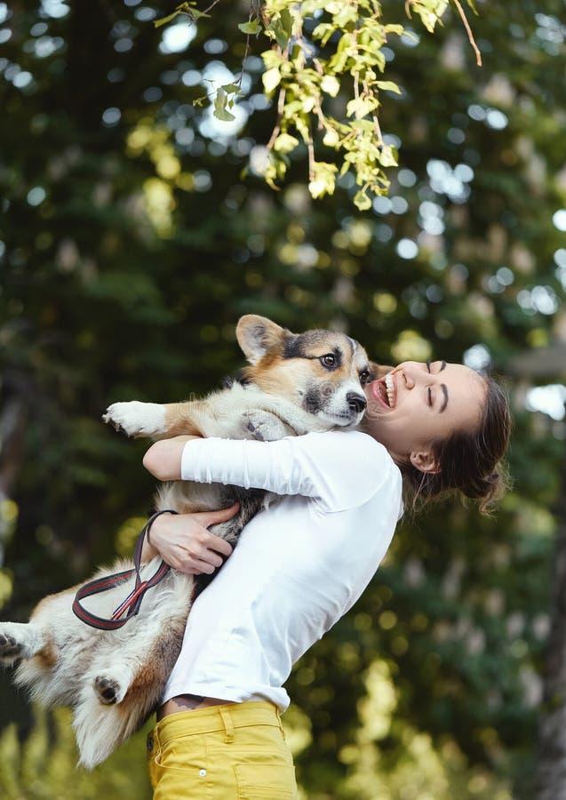 Усмехаясь смеяться молодой женщины, держа милый Corgi валийца собаки в парке outdoors Фокус на собаке стоковые фото