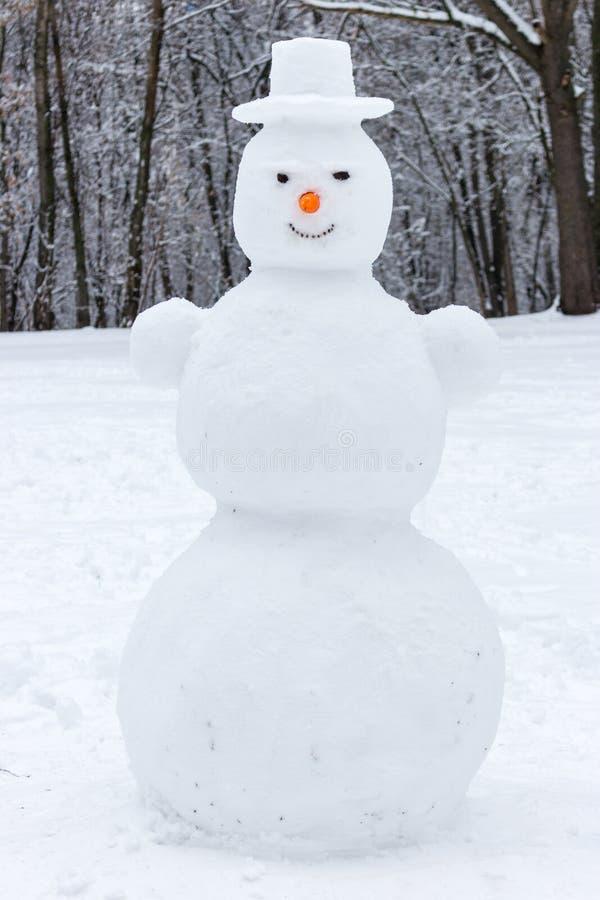 Усмехаясь снеговик с носом шляпы и моркови в потехе рождества леса зимы стоковые изображения