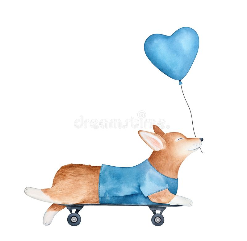 Усмехаясь характер щенка Пембрука corgi валийца на скейтборде, держа воздушный шар сердца форменный иллюстрация вектора