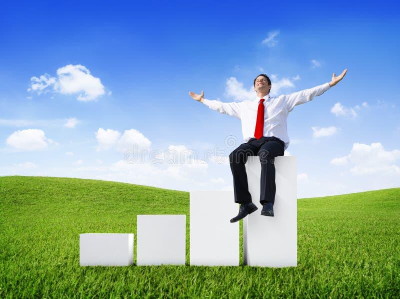 Успешный бизнесмен ослабляя в открытом поле стоковое фото rf