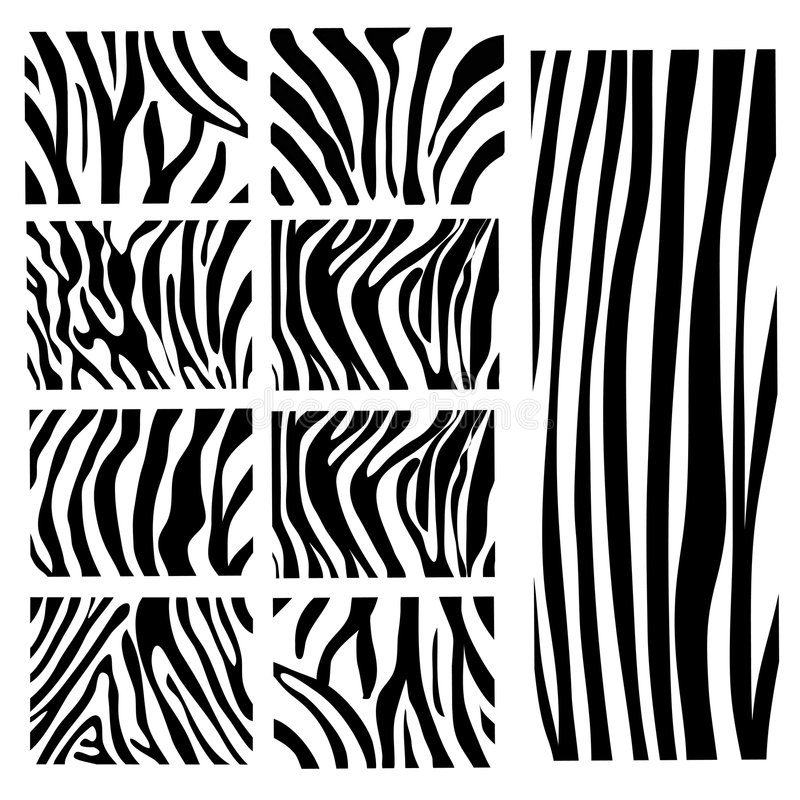 установите зебру вектора текстуры бесплатная иллюстрация