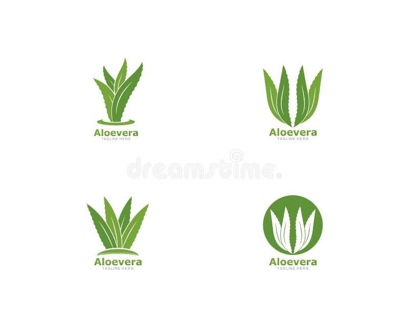 Установите значка вектора шаблона логотипа aloevera бесплатная иллюстрация