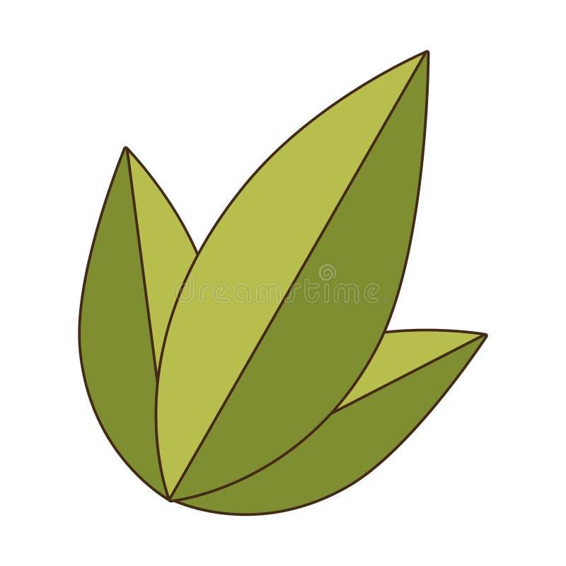 Установите значок завода природы листьев зеленого цвета собрания бесплатная иллюстрация