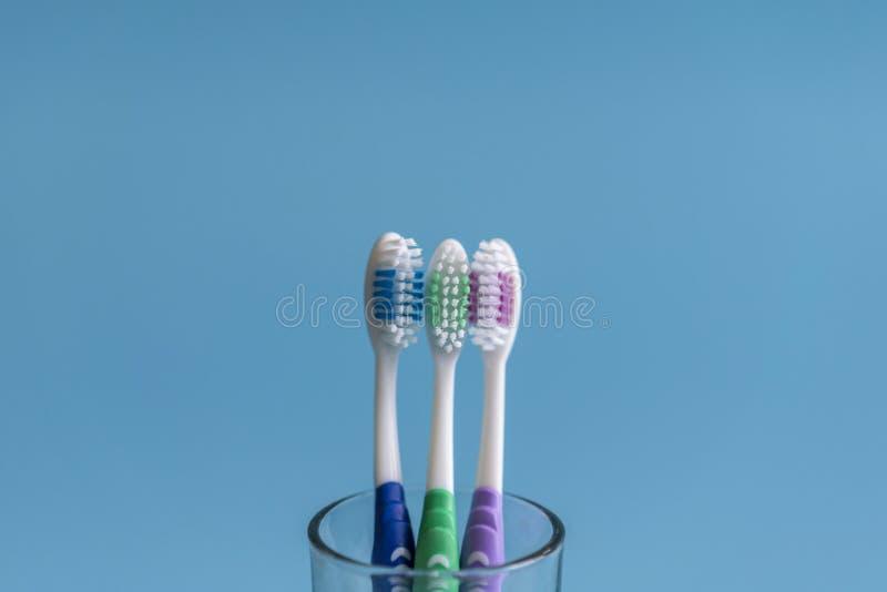 Установите зубных щеток в стекле на голубой предпосылке Чашка с зубными щетками против предпосылки цвета Зубоврачебная забота стоковое фото rf
