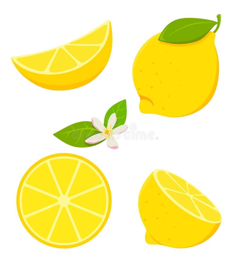 Установите изолированного лимона в стиле мультфильма с цвести r иллюстрация штока