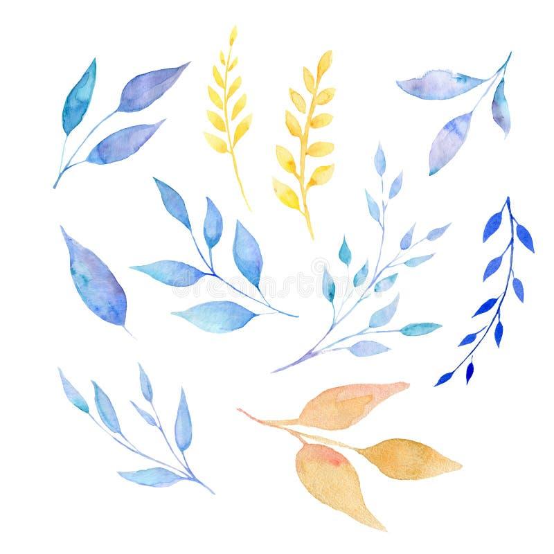 Установите листьев акварели изолированных на белизне бесплатная иллюстрация