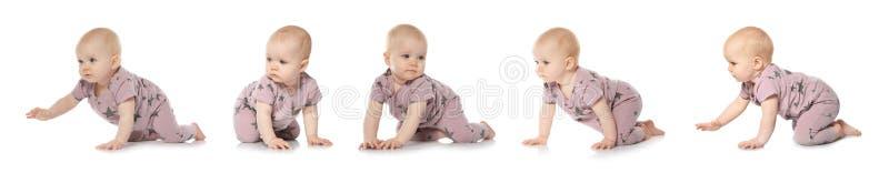 Установите милого маленького младенца вползая на белизне стоковые изображения rf