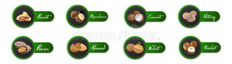 Установите названных гаек значков Ярлыки вектора логотипа установленные с грецким орехом, кокосом, мускатом, фундуком, пеканом, м бесплатная иллюстрация