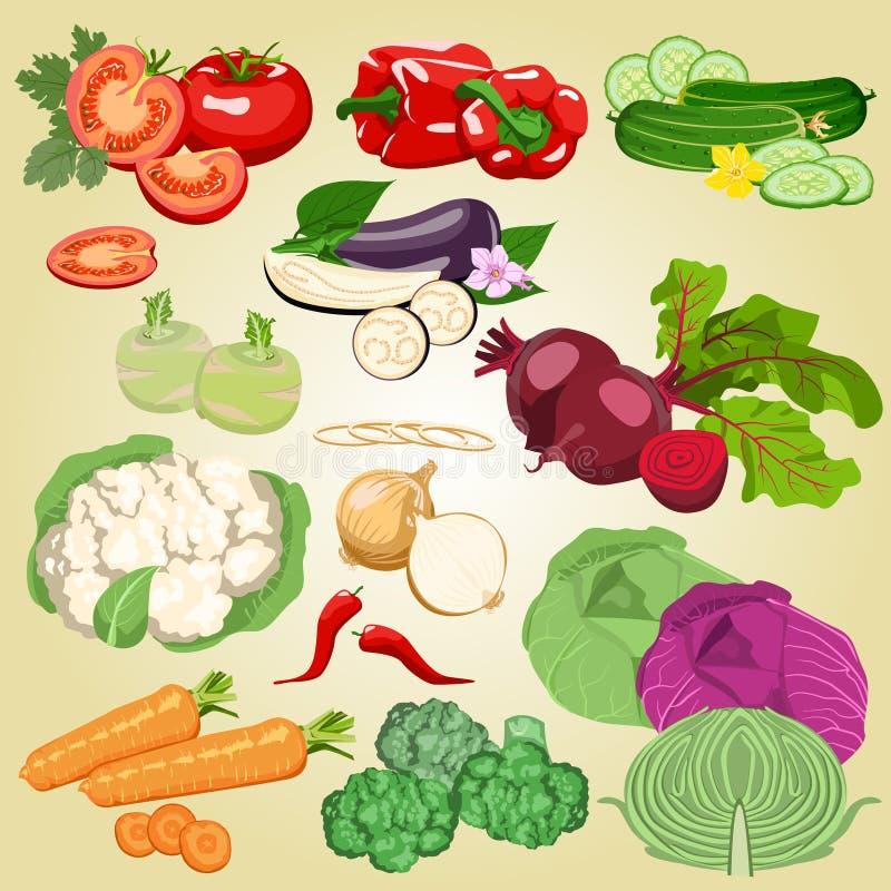 установите овощи иллюстрация штока