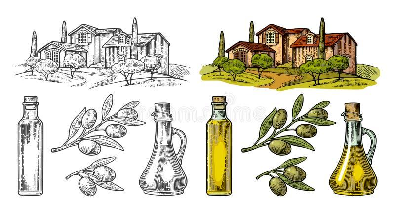 Установите оливку Бутылочное стекло, ветвь с листьями, сельская вилла ландшафта бесплатная иллюстрация