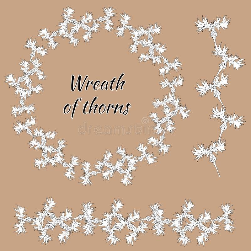 Установите орнаментов контура флористических Венок цветка от белого плана cornflower Цветки весны нарисованы в чернилах вручную бесплатная иллюстрация