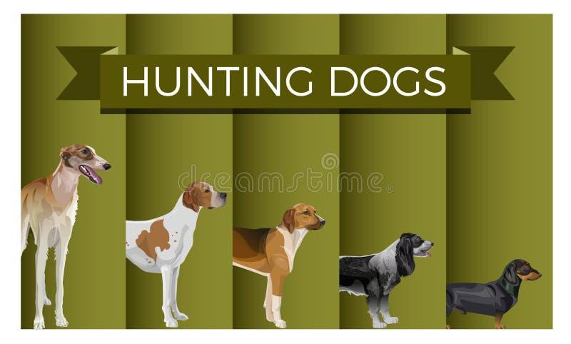 Установите охотничьей собаки иллюстрация штока