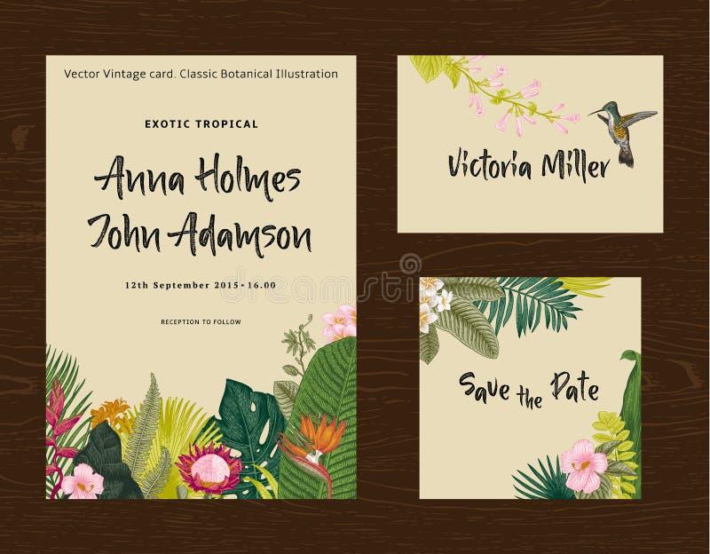 Установите печатание свадьбы Приглашение, карточка гостя, сохраняет дату Иллюстрация винтажного вектора ботаническая иллюстрация вектора