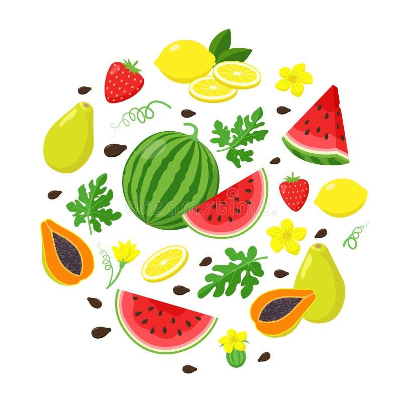 Установите плодов лета в плоском дизайне, иллюстрации вектора изолированной на белой предпосылке Арбуз, папапайя, лимон иллюстрация штока