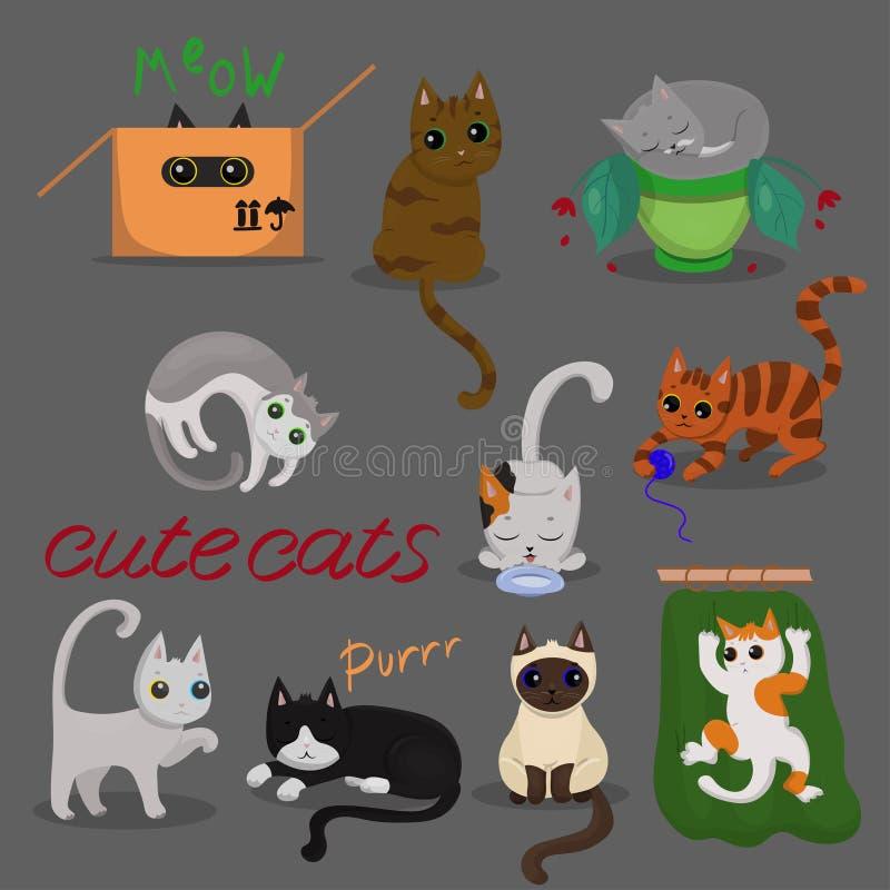 Установите различных котов в различных представлениях с на серой предпосылкой r иллюстрация вектора