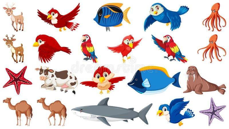Установите разных видов морских животных и птиц иллюстрация штока