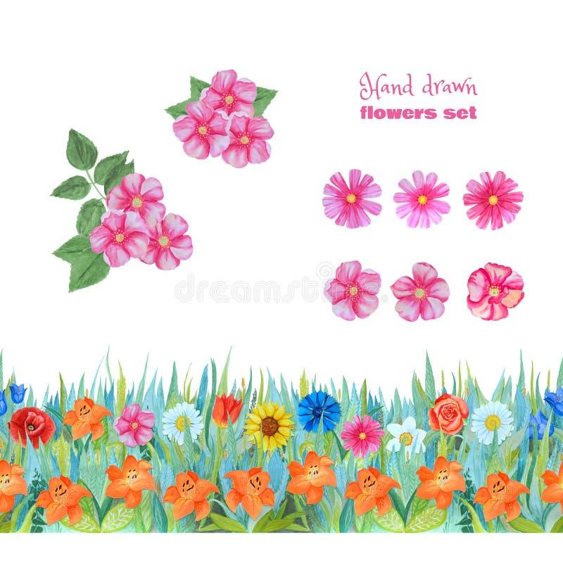 Установите розовых цветков Дикие цветки розы и cosme Безшовная флористическая граница с лилиями бесплатная иллюстрация