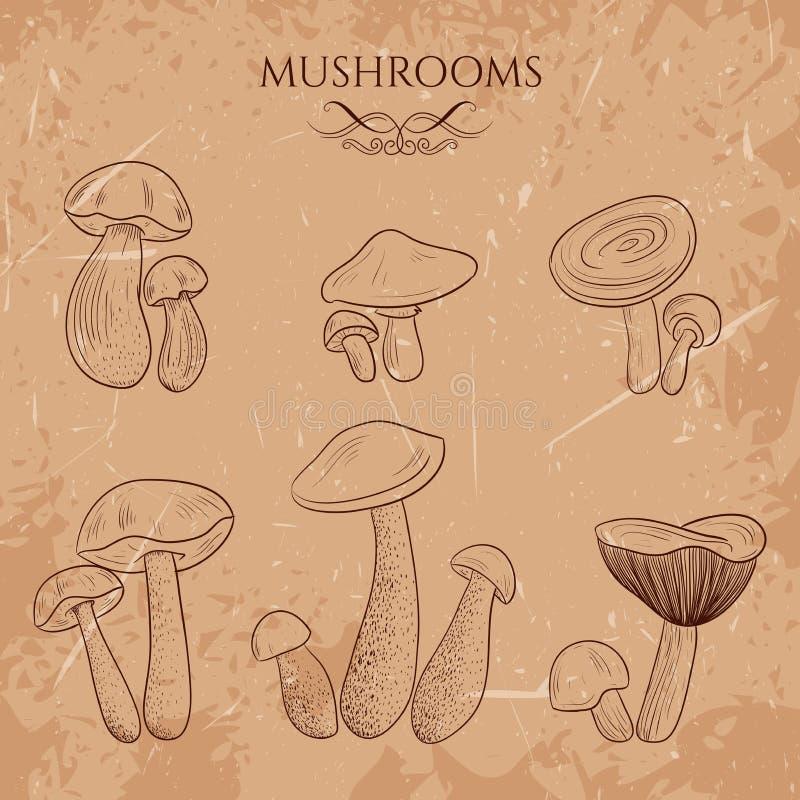 Установите с разнообразие винтажными грибами иллюстрация вектора