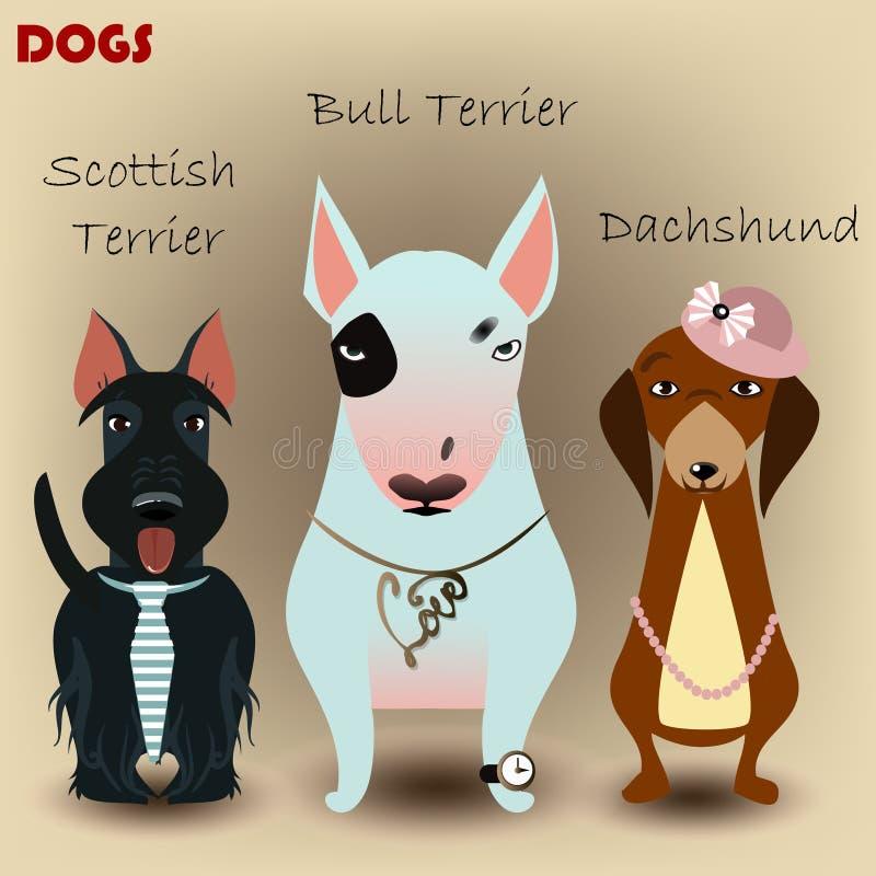 Установите с чистоплеменными собаками иллюстрация штока