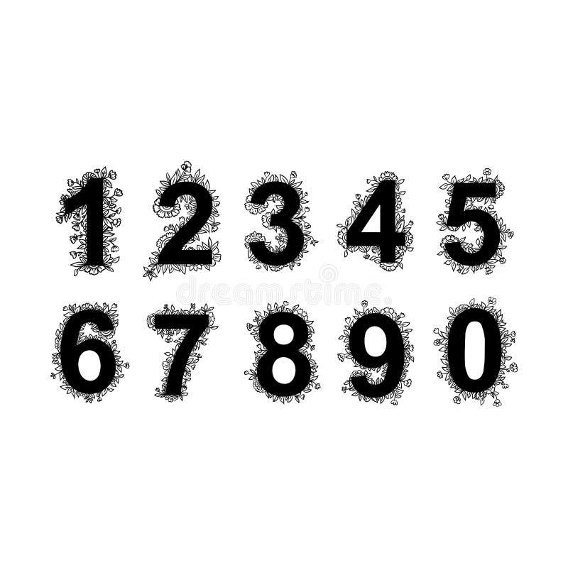 Установите флористических номеров от 1 до 9 с цветками, листьями и травяными деталями Черно-белые элементы графического дизайна иллюстрация штока
