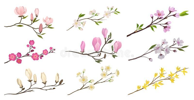 Установите цветя ветвей с небольшими цветками и зелеными листьями Хворостины фруктовых деревьев Детальные плоские значки вектора иллюстрация штока
