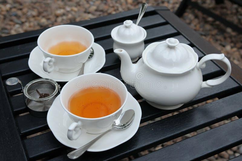 установите чай стоковое фото