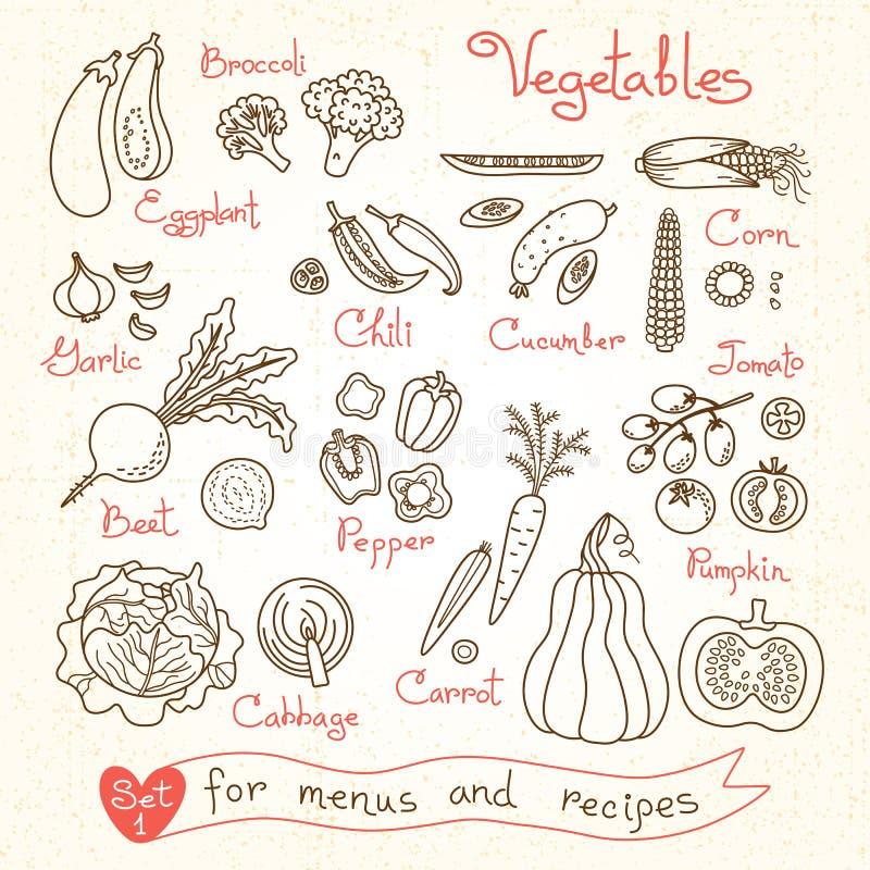 Установите чертежи овощей для меню дизайна иллюстрация вектора